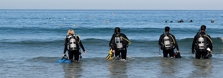 Dive California