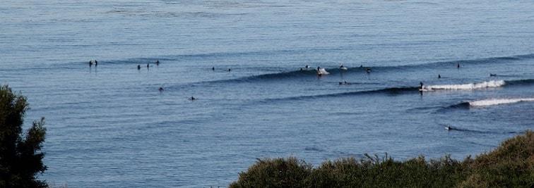 Ocean Beach Surf School