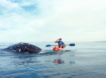 San Diego Canoe Kayak